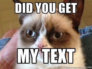 grumpy cat text